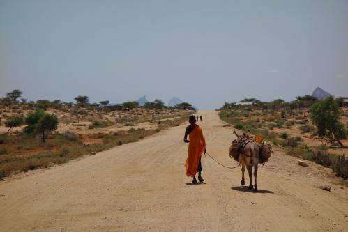 Samburu and mule