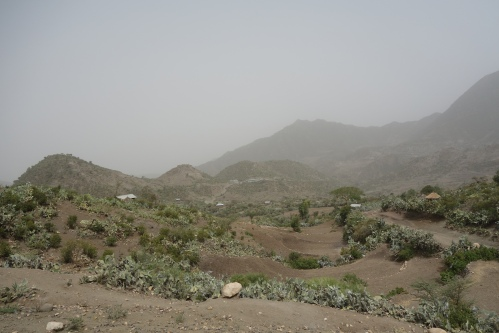 The dry landscape in June