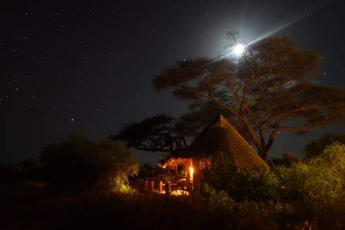 Our Bungalow under African stars