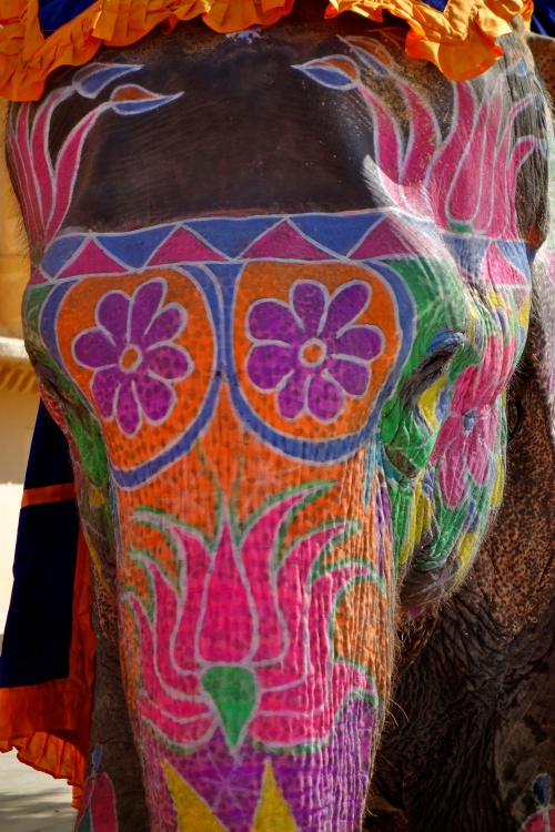 Decretive Indian Elephant