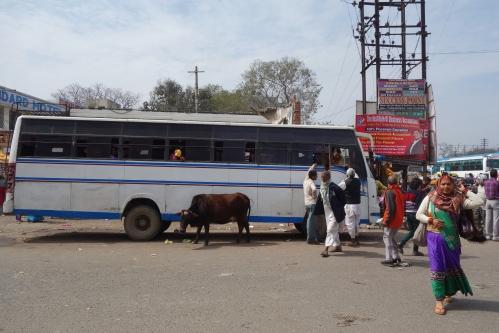 The Bus at Ghorakhpur
